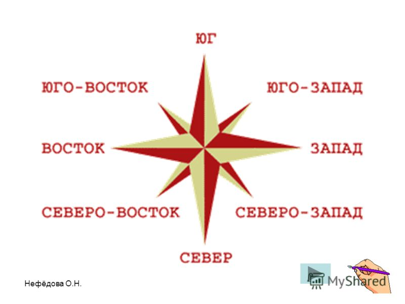 Нефёдова О.Н.
