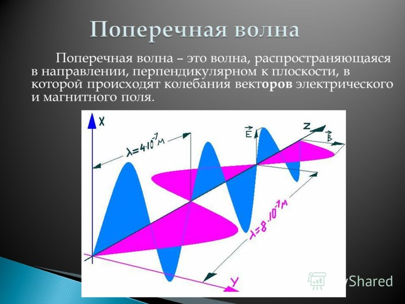 Поперечная волна – это волна, распространяющаяся в направлении, перпендикулярном к плоскости, в которой происходят колебания вект оров электрического и магнитного поля.