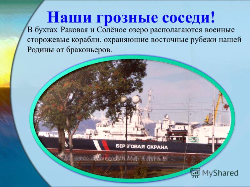 В бухтах Раковая и Солёное озеро располагаются военные сторожевые корабли, охраняющие восточные рубежи нашей Родины от браконьеров. Наши грозные соседи!