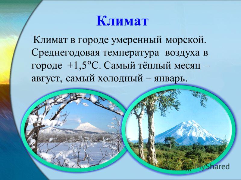 Климат Климат в городе умеренный морской. Среднегодовая температура воздуха в городе +1,5С. Самый тёплый месяц – август, самый холодный – январь.