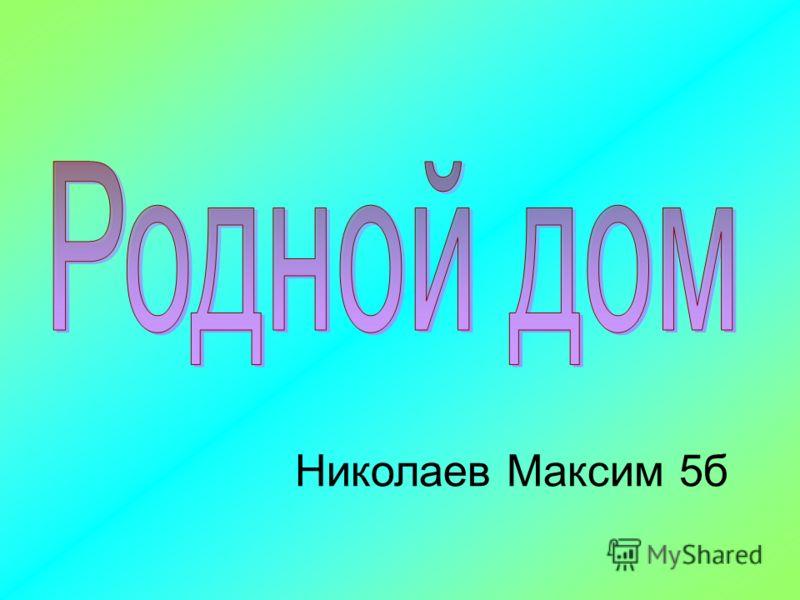 Николаев Максим 5б