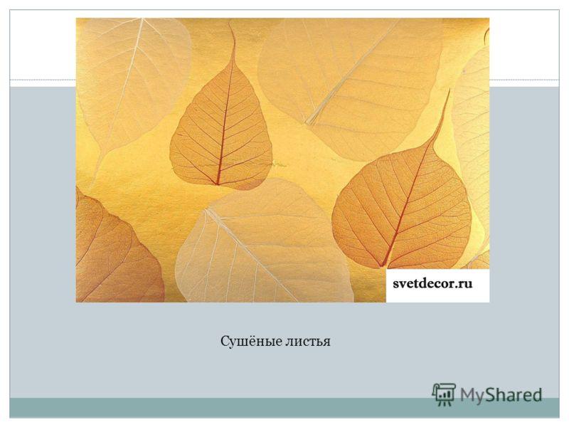 Сушёные листья