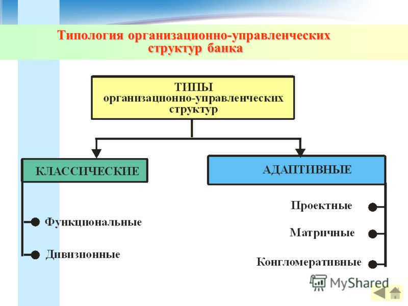 Типология организационно-управленческих структур банка