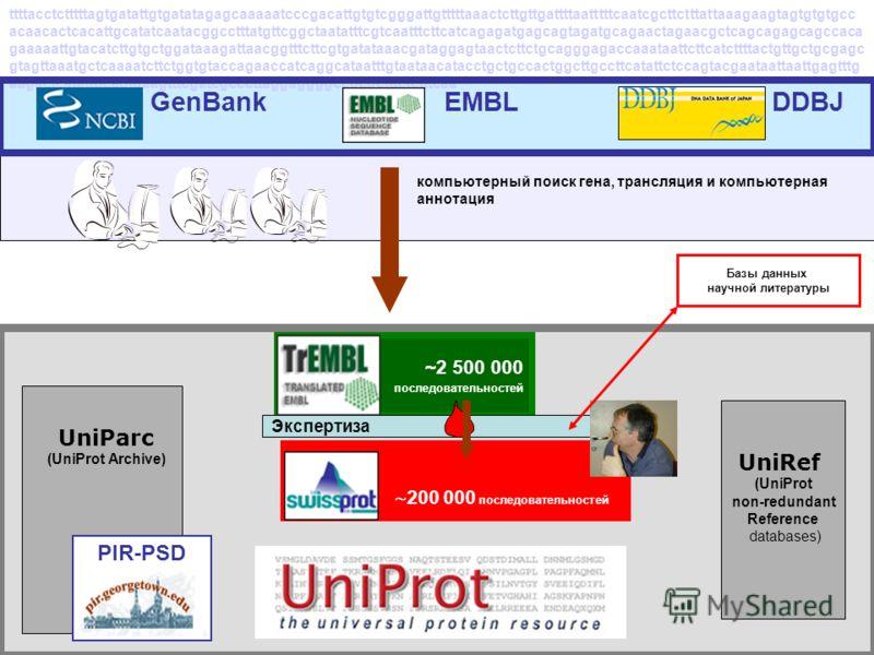 ~2 500 000 последовательностей DDBJEMBL GenBank ttttacctctttttagtgatattgtgatatagagcaaaaatcccgacattgtgtcgggattgtttttaaactcttgttgattttaatttttcaatcgcttctttattaaagaagtagtgtgtgcc acaacactcacattgcatatcaatacggcctttatgttcggctaatatttcgtcaatttcttcatcagagatgagc