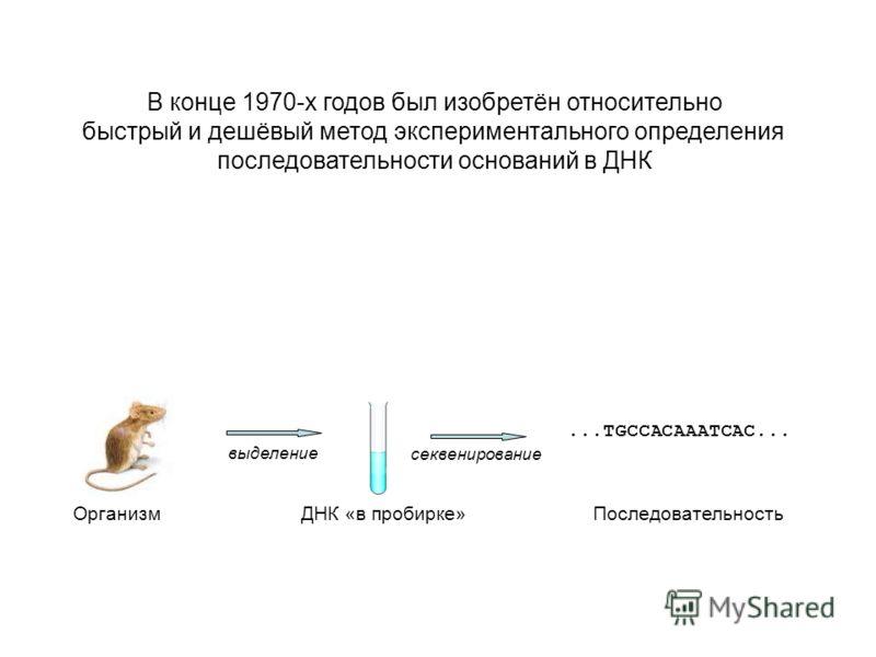 В конце 1970-х годов был изобретён относительно быстрый и дешёвый метод экспериментального определения последовательности оснований в ДНК Организм ДНК «в пробирке»Последовательность выделение секвенирование...TGCCACAAATCAC...