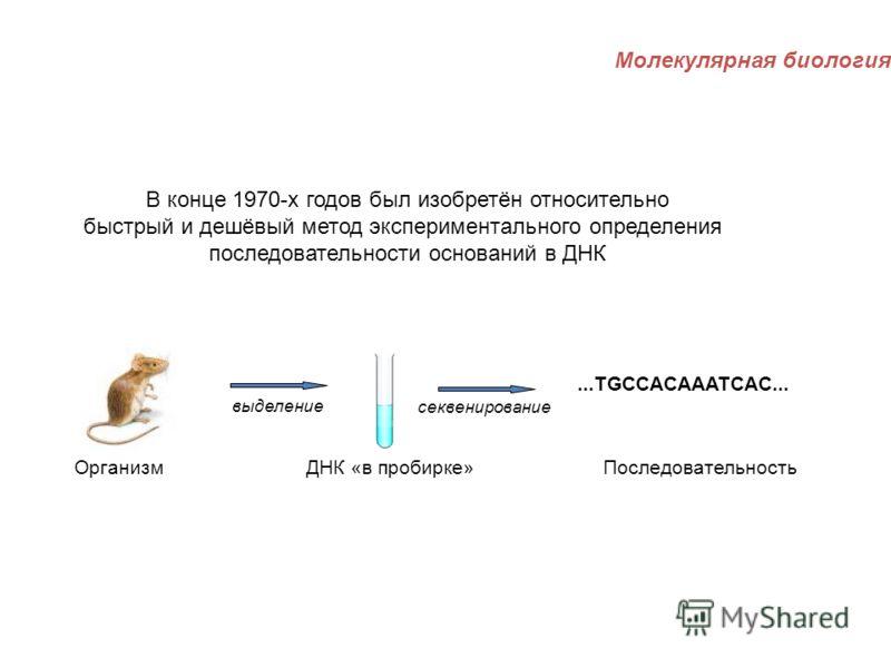 В конце 1970-х годов был изобретён относительно быстрый и дешёвый метод экспериментального определения последовательности оснований в ДНК Организм ДНК «в пробирке»Последовательность выделение секвенирование...TGCCACAAATCAC... Молекулярная биология
