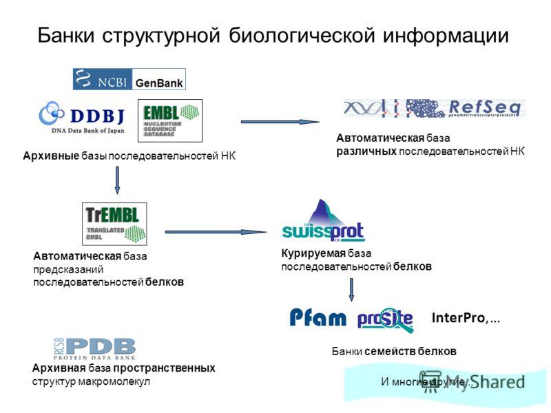 InterPro,... Банки структурной биологической информации Архивные базы последовательностей НК Автоматическая база различных последовательностей НК Курируемая база последовательностей белков Автоматическая база предсказаний последовательностей белков А