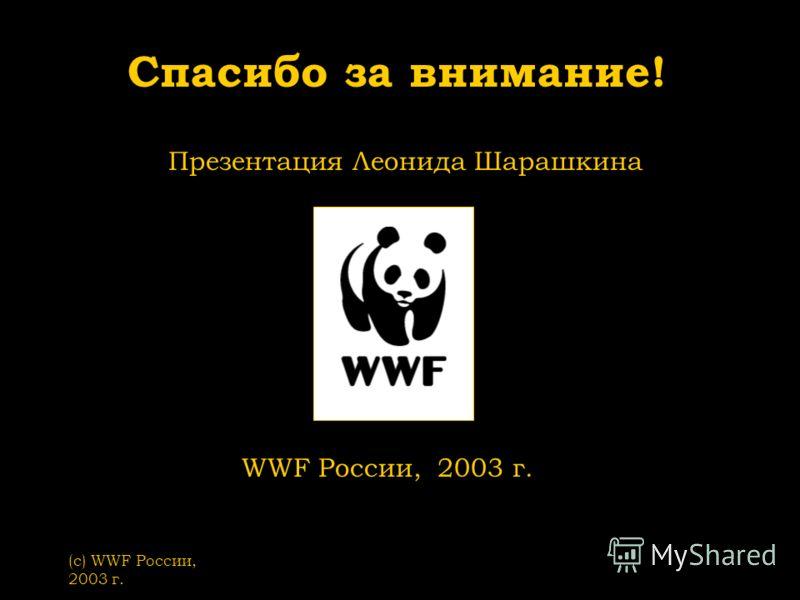 (с) WWF России, 2003 г. Спасибо за внимание! Презентация Леонида Шарашкина WWF России, 2003 г.