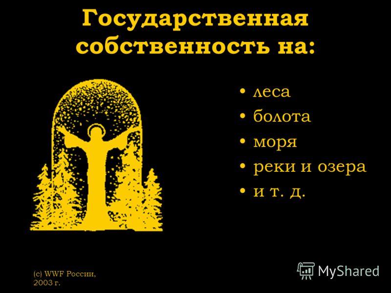 (с) WWF России, 2003 г. Государственная собственность на: леса болота моря реки и озера и т. д.
