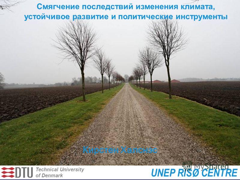 Technical University of Denmark UNEP RISØ CENTRE Смягчение последствий изменения климата, устойчивое развитие и политические инструменты Кирстен Халснэс