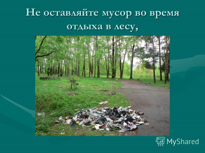 Не оставляйте мусор во время отдыха в лесу,