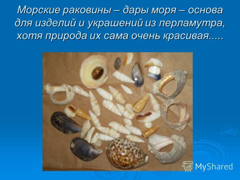 Морские раковины – дары моря – основа для изделий и украшений из перламутра, хотя природа их сама очень красивая.....