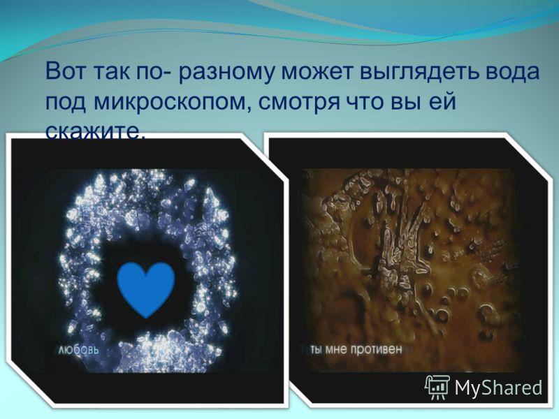 Вот так по- разному может выглядеть вода под микроскопом, смотря что вы ей скажите.