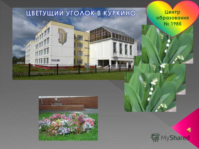 Центр образования 1985