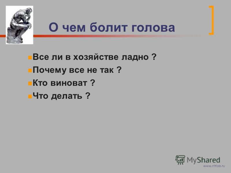 О чем болит голова Все ли в хозяйстве ладно ? Почему все не так ? Кто виноват ? Что делать ? www.ntrlab.ru