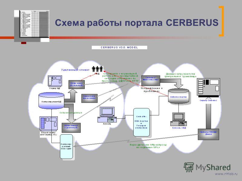 Схема работы портала CERBERUS www.ntrlab.ru