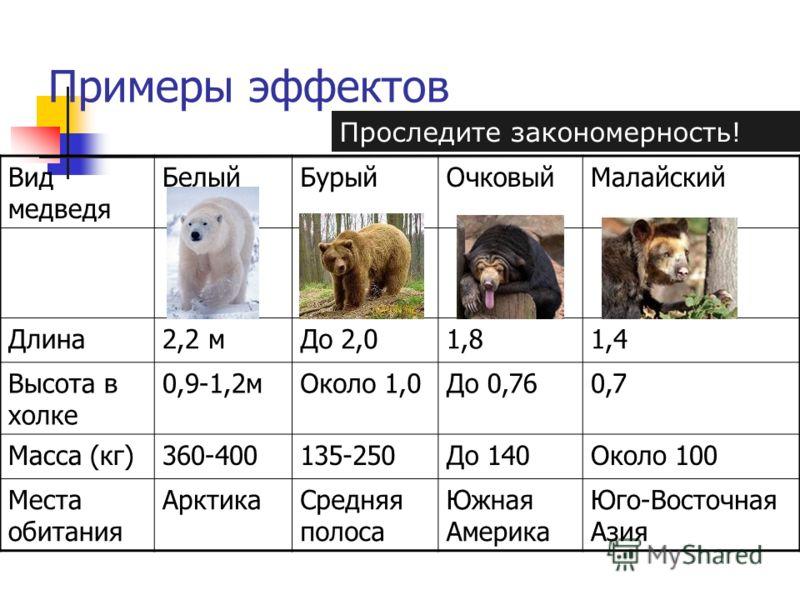 Примеры эффектов Вид медведя БелыйБурыйОчковыйМалайский Длина2,2 мДо 2,01,81,4 Высота в холке 0,9-1,2мОколо 1,0До 0,760,7 Масса (кг)360-400135-250До 140Около 100 Места обитания АрктикаСредняя полоса Южная Америка Юго-Восточная Азия Проследите законом