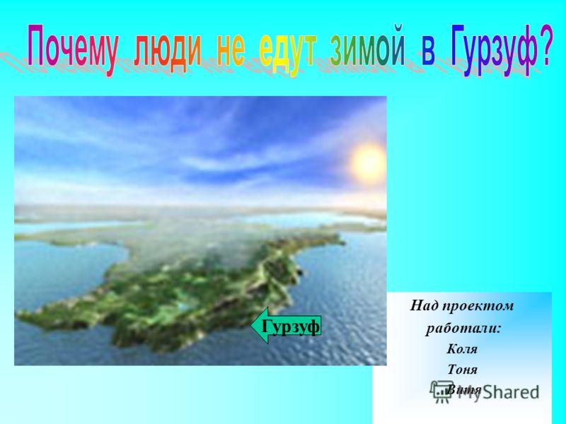Над проектом работали: Коля Тоня Витя Гурзуф