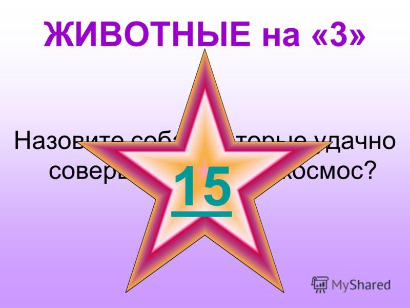 НИКОЛАЕВ на «5» Когда А.Г. Николаев совершил второй полёт и на каком корабле?. 1 15