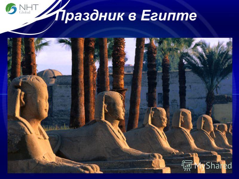 Праздник в Египте 5