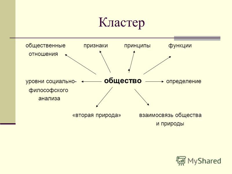 Кластер общественные признаки принципы функции отношения уровни социально- общество определение философского анализа «вторая природа» взаимосвязь общества и природы