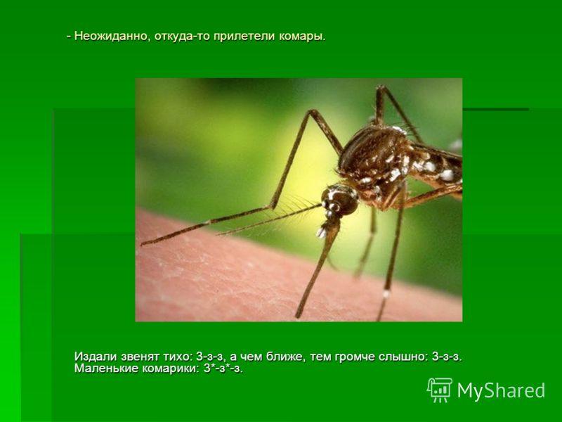 - Неожиданно, откуда-то прилетели комары. Издали звенят тихо: 3-з-з, а чем ближе, тем громче слышно: 3-з-з. Маленькие комарики: 3*-з*-з.