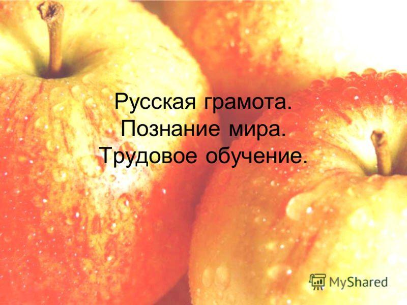 Русская грамота. Познание мира. Трудовое обучение.