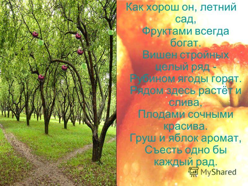 Как хорош он, летний сад, Фруктами всегда богат. Вишен стройных целый ряд - Рубином ягоды горят. Рядом здесь растёт и слива, Плодами сочными красива. Груш и яблок аромат, Съесть одно бы каждый рад.