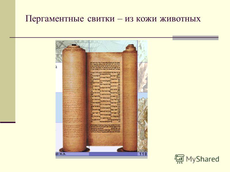 Пергаментные свитки – из кожи животных