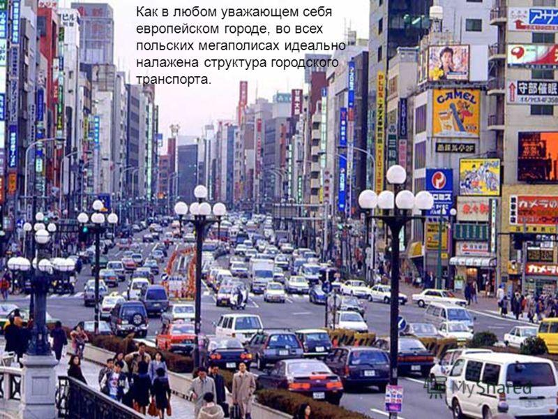 Как в любом уважающем себя европейском городе, во всех польских мегаполисах идеально налажена структура городского транспорта.
