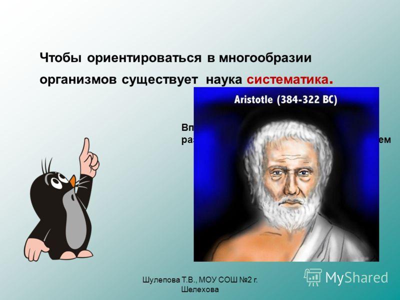 Шулепова Т.В., МОУ СОШ 2 г. Шелехова Чтобы ориентироваться в многообразии организмов существует наука систематика. Впервые система животных была разработана в 4 веке до н.э. Аристотелем