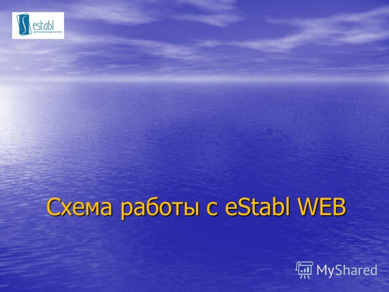 Схема работы с eStabl WEB