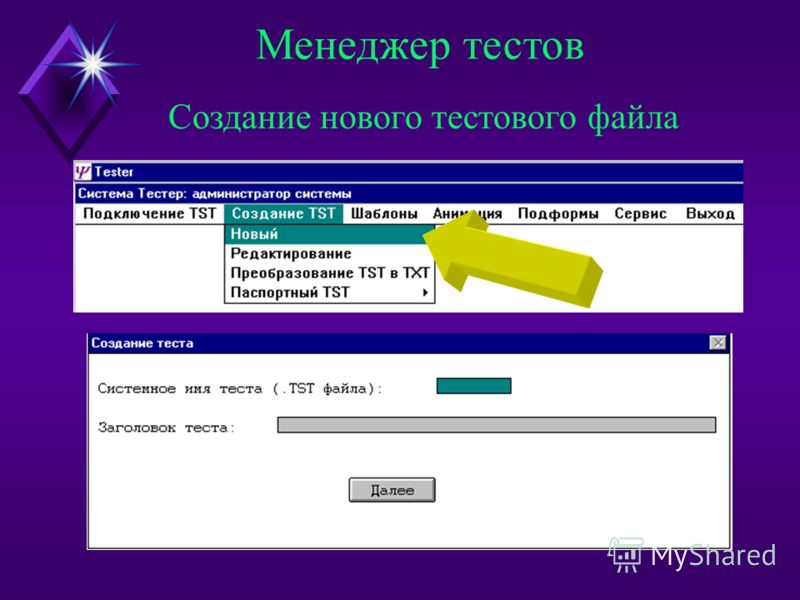 Менеджер тестов Подключение к системе необходимого набора тестов Средства разработки компьютерных вариантов тестов Задание шаблона для автоматического формирования билетов Подготовка графического материала для анимации Преобразование файлов DOS - WIN