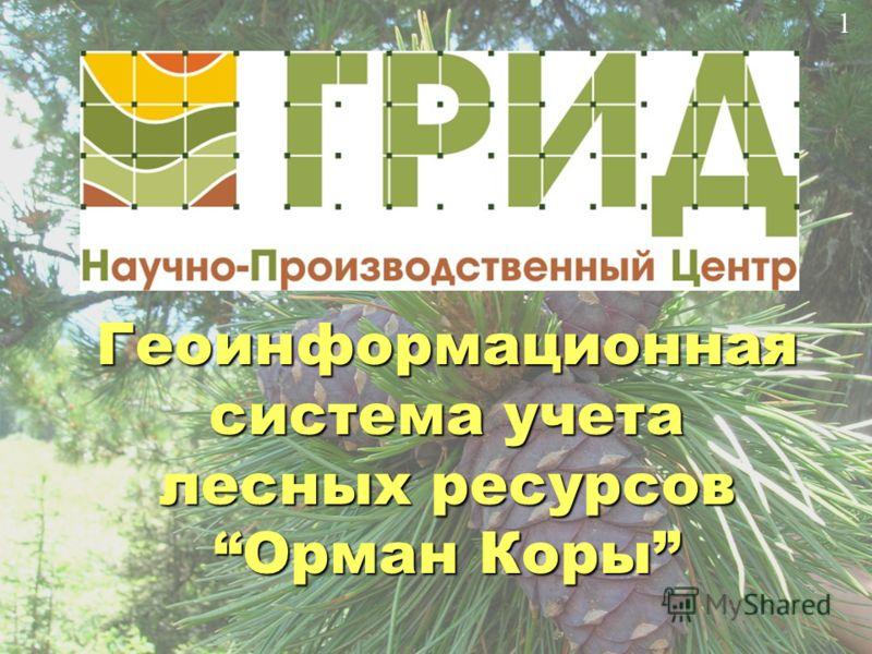 Геоинформационная система учета лесных ресурсов Орман КорыОрман Коры 1