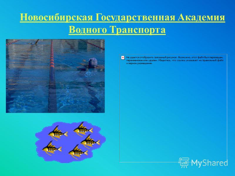 Новосибирская Государственная Академия Водного Транспорта