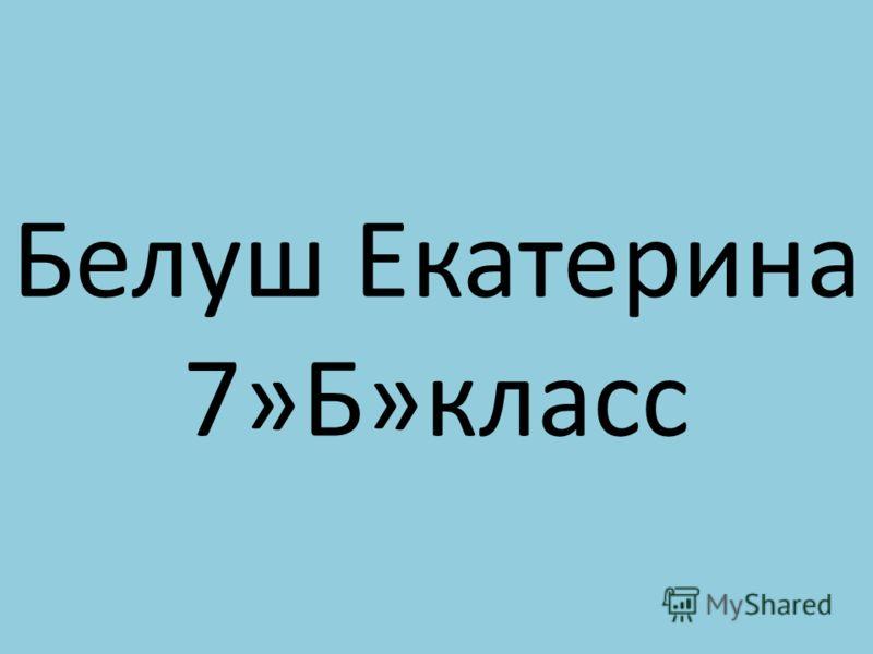 Белуш Екатерина 7»Б»класс