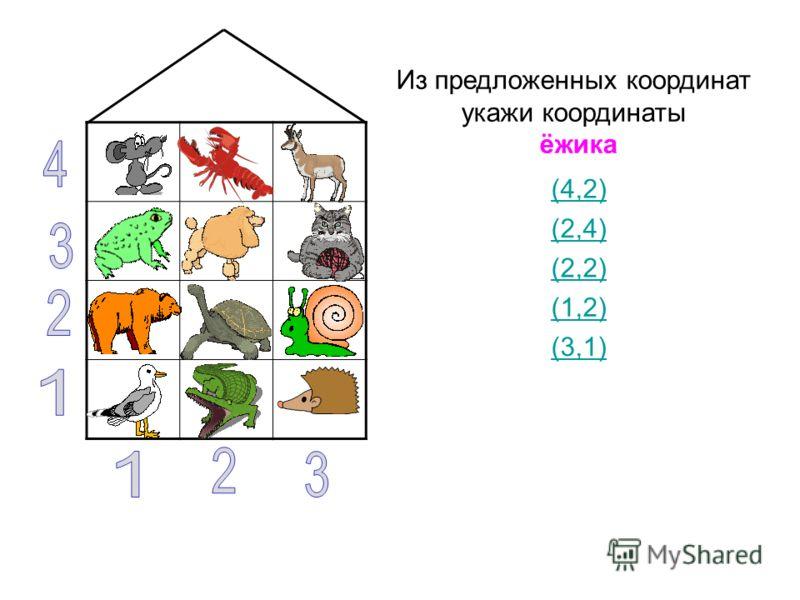 Из предложенных координат укажи координаты ёжика (4,2) (2,4) (2,2) (1,2) (3,1)