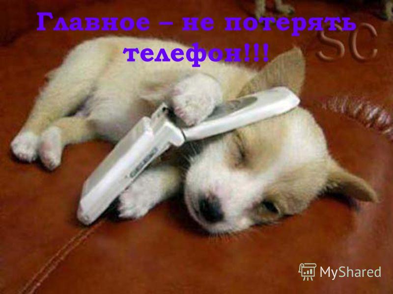 Главное – не потерять телефон!!!