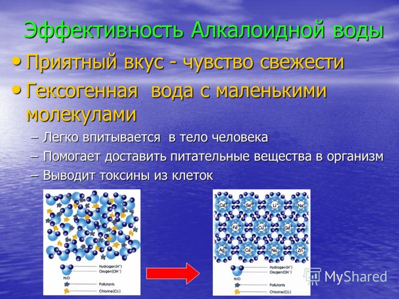 Эффективность Алкалоидной воды Приятный вкус - чувство свежести Приятный вкус - чувство свежести Гексогенная вода с маленькими молекулами Гексогенная вода с маленькими молекулами –Легко впитывается в тело человека –Помогает доставить питательные веще