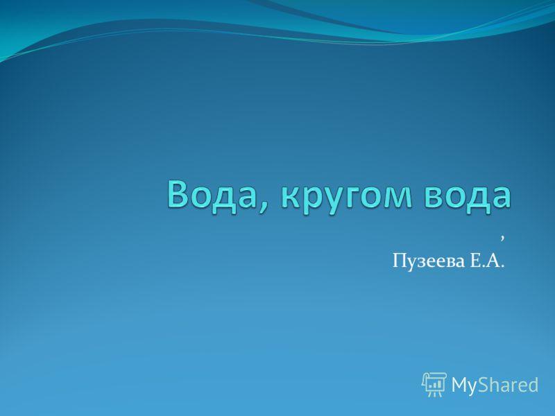 , Пузеева Е.А.