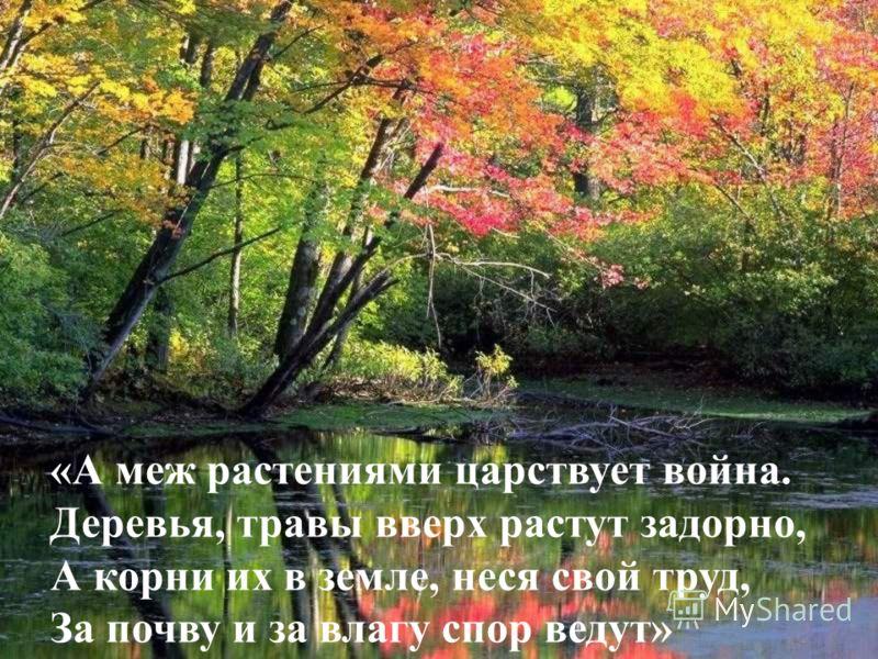 «А меж растениями царствует война. Деревья, травы вверх растут задорно, А корни их в земле, неся свой труд, За почву и за влагу спор ведут»