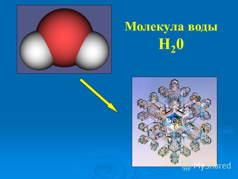 Молекула воды Н 2 0
