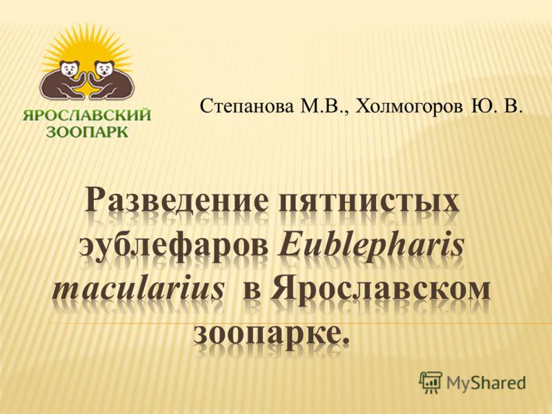 Степанова М.В., Холмогоров Ю. В.