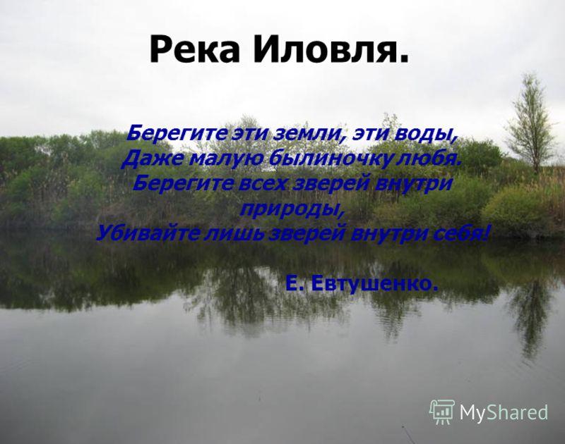 Река Иловля. Берегите эти земли, эти воды, Даже малую былиночку любя. Берегите всех зверей внутри природы, Убивайте лишь зверей внутри себя! Е. Евтушенко.