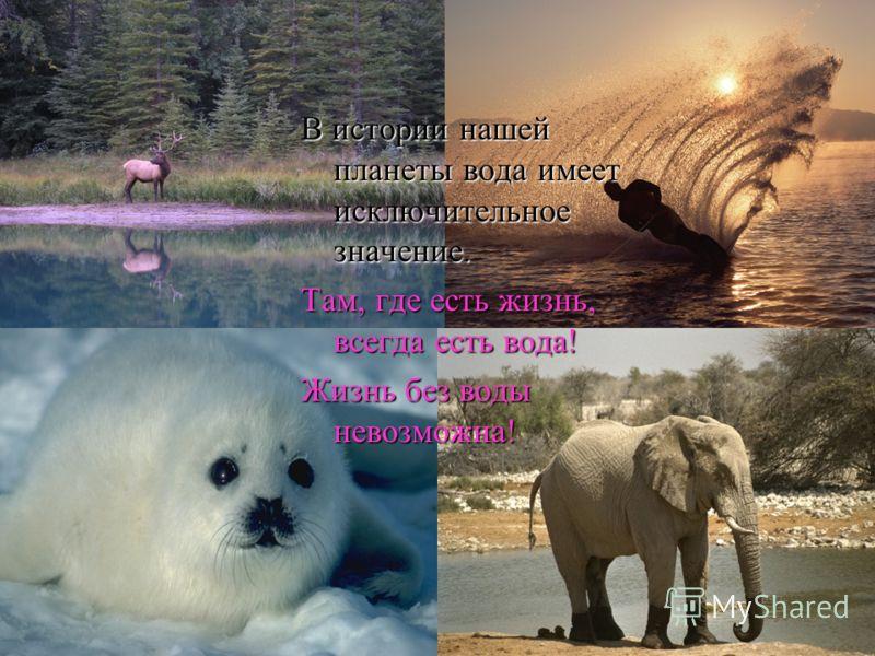 В истории нашей планеты вода имеет исключительное значение. Там, где есть жизнь, всегда есть вода! Жизнь без воды невозможна!
