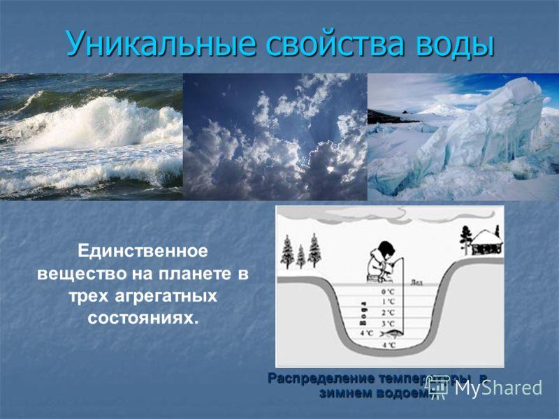 Уникальные свойства воды Распределение температуры в зимнем водоеме Единственное вещество на планете в трех агрегатных состояниях.