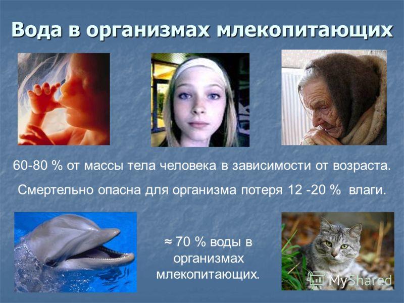 Вода в организмах млекопитающих 60-80 % от массы тела человека в зависимости от возраста. Смертельно опасна для организма потеря 12 -20 % влаги. 70 % воды в организмах млекопитающих.