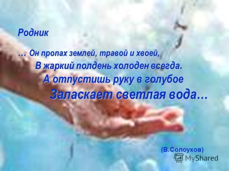 Родник … Он пропах землей, травой и хвоей, В жаркий полдень холоден всегда. А отпустишь руку в голубое Заласкает светлая вода… (В.Солоухов)