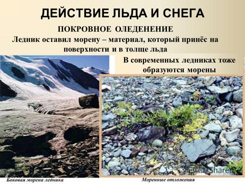 ДЕЙСТВИЕ ЛЬДА И СНЕГА ПОКРОВНОЕ ОЛЕДЕНЕНИЕ Ледник оставил морену – материал, который принёс на поверхности и в толще льда В современных ледниках тоже образуются морены