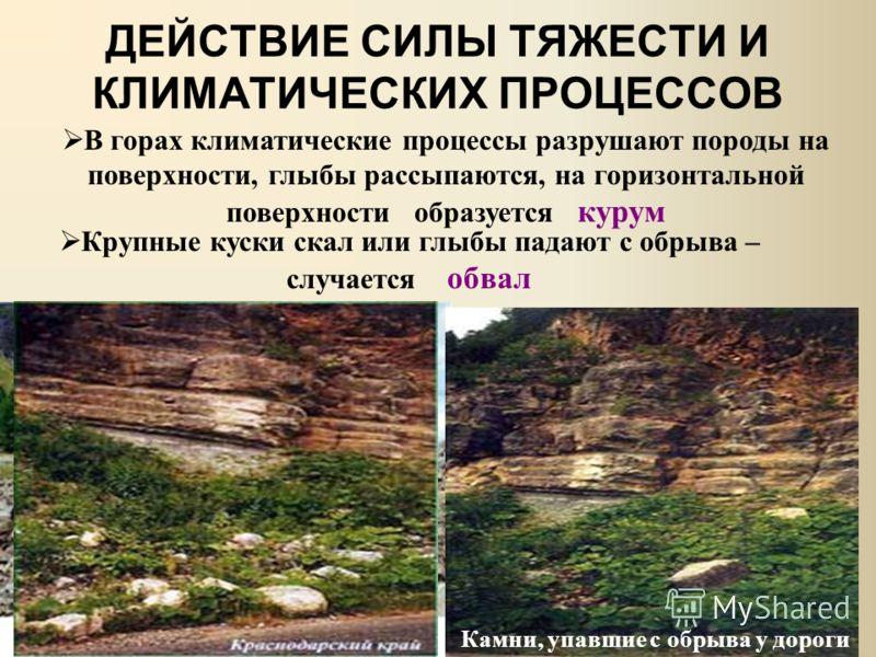 ДЕЙСТВИЕ СИЛЫ ТЯЖЕСТИ И КЛИМАТИЧЕСКИХ ПРОЦЕССОВ В горах климатические процессы разрушают породы на поверхности, глыбы рассыпаются, на горизонтальной поверхности образуется курум Крупные куски скал или глыбы падают с обрыва – случается обвал Камни, уп